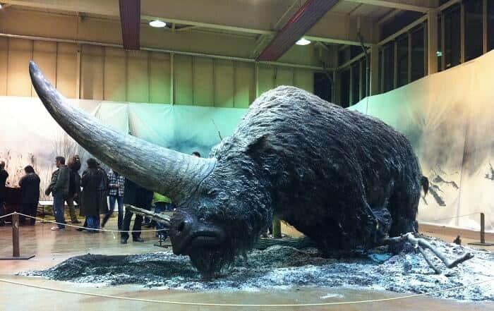 Reeconstrucción de un Elasmotherium