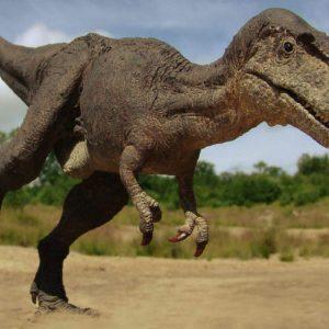 Gorgosaurus – dinosaurio carnívoro