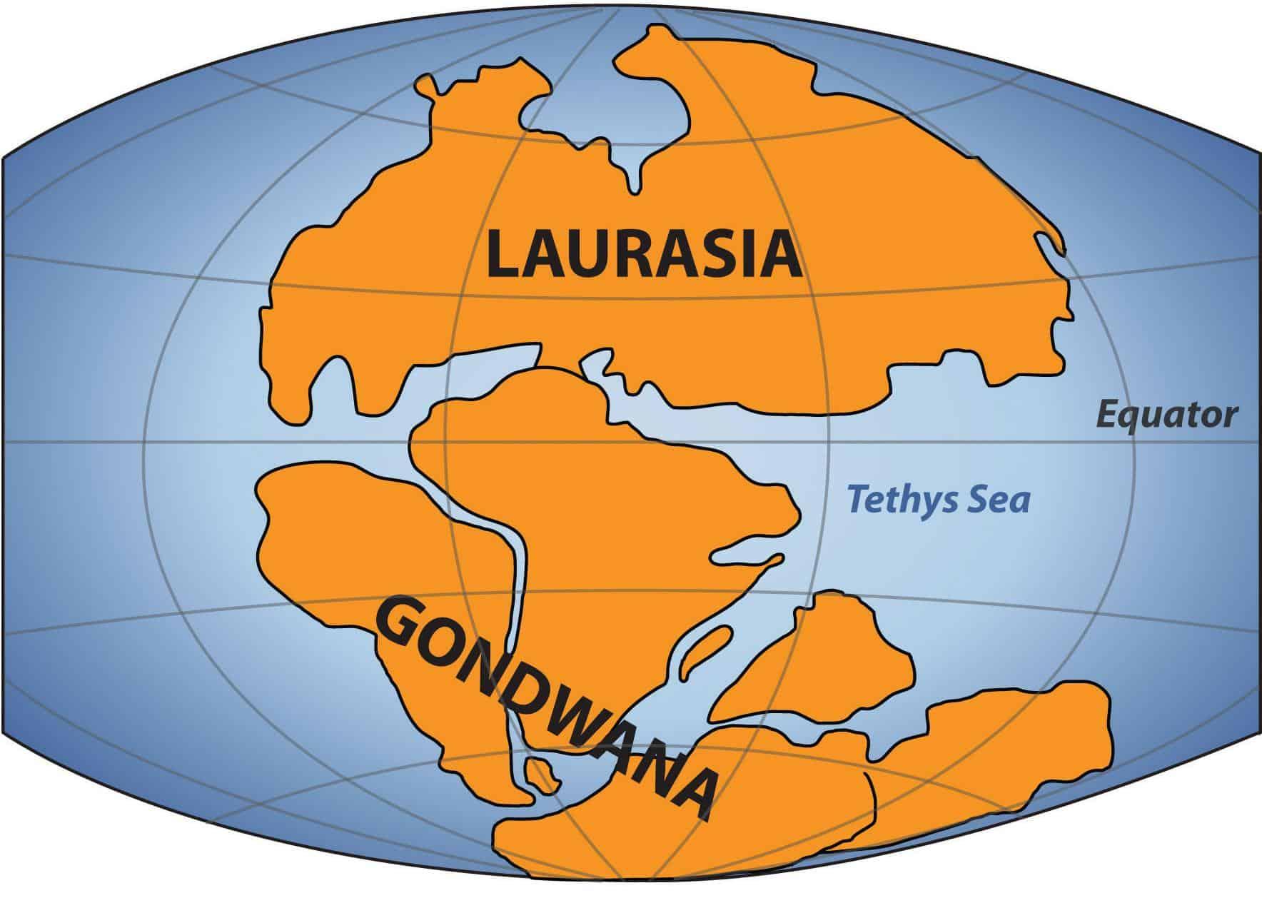 laurasia-gondwana