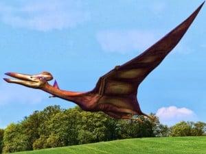 Pterosaurios-reptiles-voladores