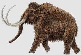 características del mamut prehistórico