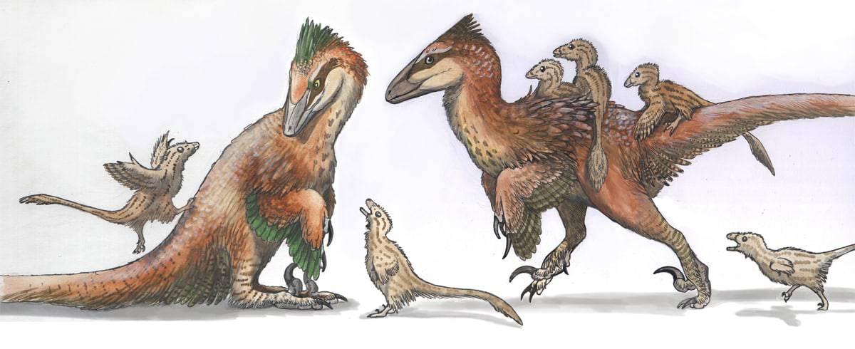 deinonychus-family