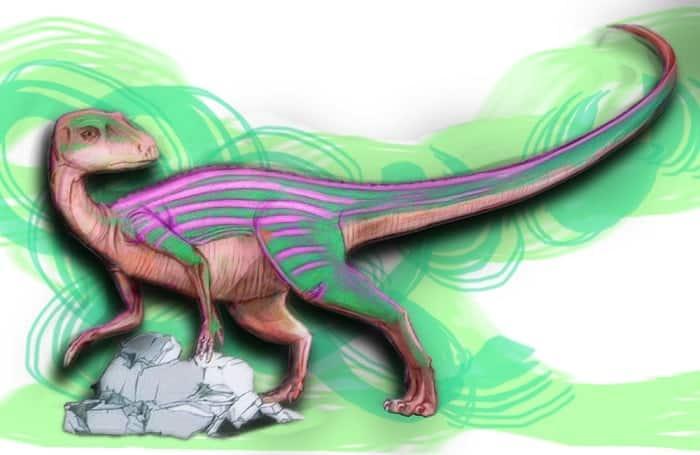 como se comportaba en su habitat el abrictosaurus