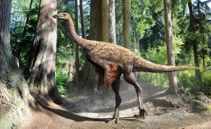 Habitat Ornithomimus