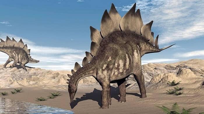 Hábitat natural del Stegosaurus