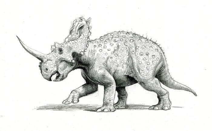 Descripción del Centrosaurus