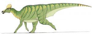 Descripción del Corythosaurus