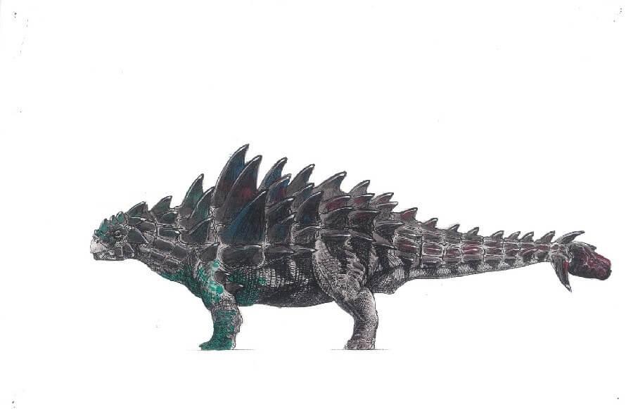 Dibujo de un Ankylosaurus