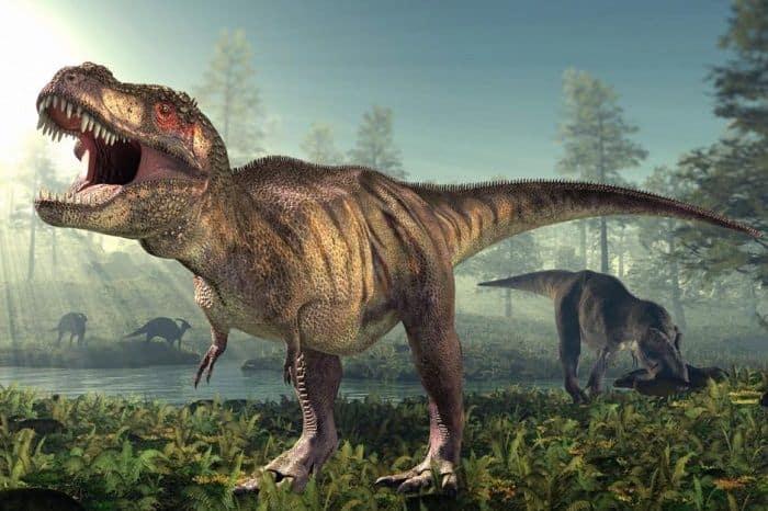 Hábitat natural del Tyrannosaurus Rex