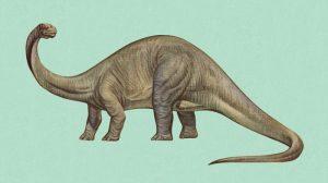Historia Brontosaurus