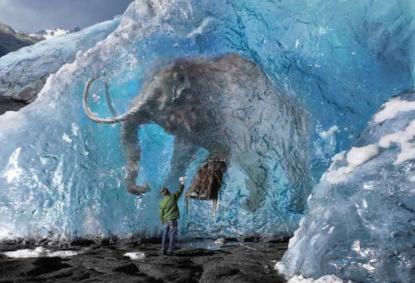 mamut-1