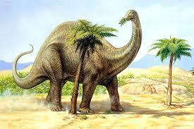 brontosaruio-comiendo