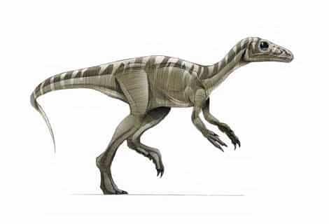 dinosaurios omnivoros del jurasico
