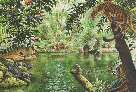 epoca paleogeno