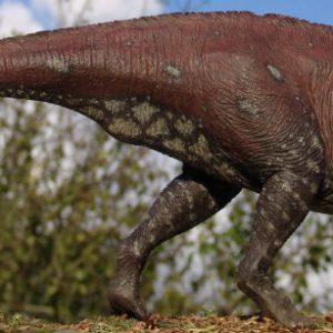Lambeosaurus – dinosaurio herbivoro