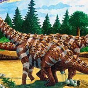 Saltasaurus – dinosaurio herbivoro