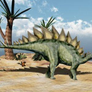 Stegosaurus – dinosaurio herbivoro