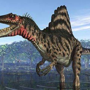 spinosaurus – dinosaurio carnívoro
