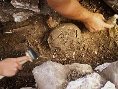 aprende arqueologia y paleontologia