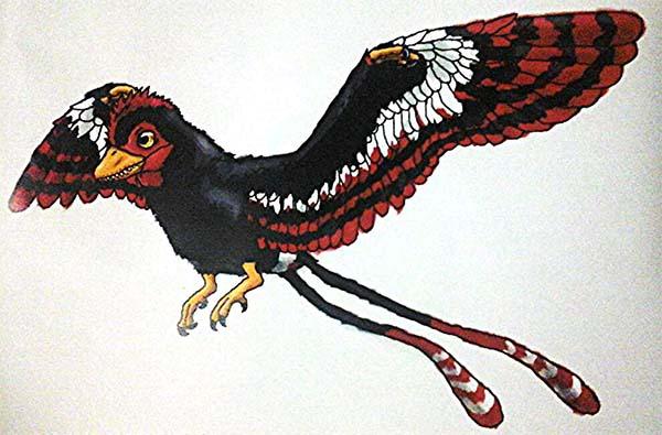 Alexornis - ave prehistorica