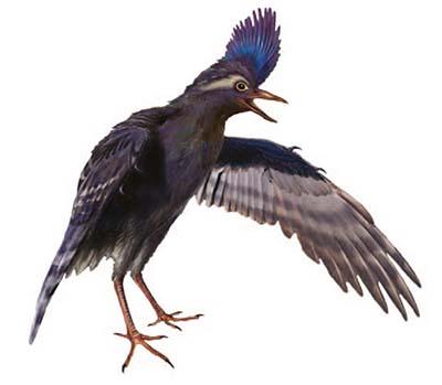 Archaeornithura - ave prehistorica