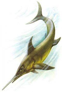 Eurhinosaurus vivio en europa