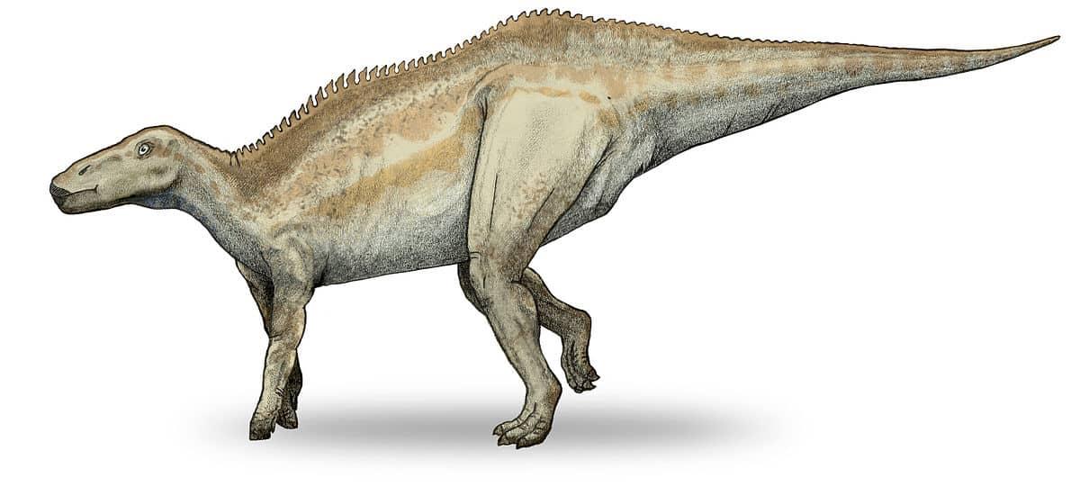 dinosaurio Shantungosaurus
